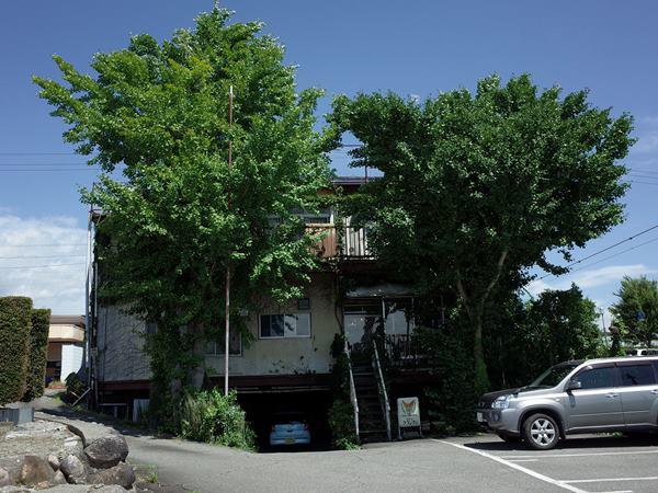 駒ヶ根・小町屋・プランタン18