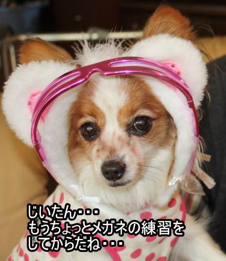 f:id:sabu36:20100316212558j:image