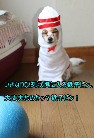 f:id:sabu36:20100318213605j:image