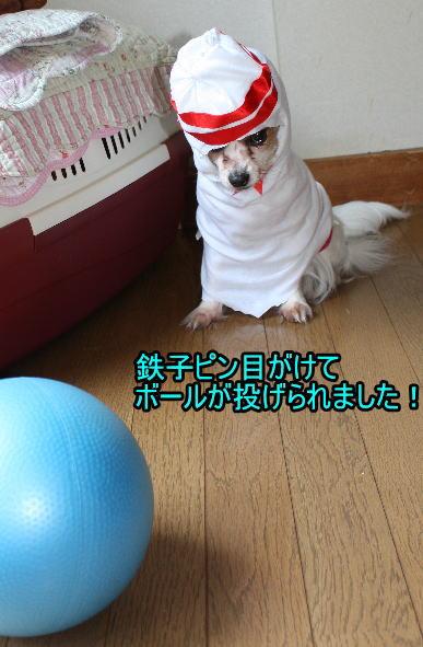 f:id:sabu36:20100318213606j:image