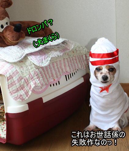 f:id:sabu36:20100318213607j:image