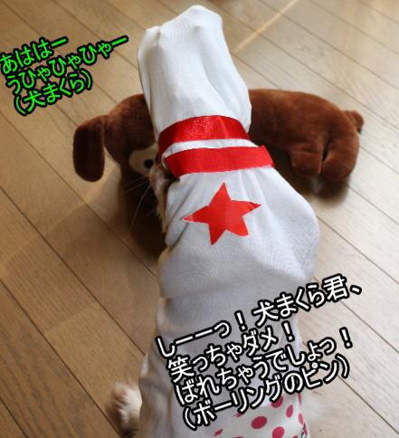 f:id:sabu36:20100318213613j:image