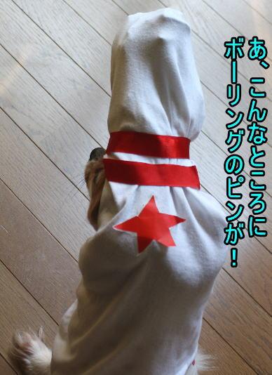 f:id:sabu36:20100318213615j:image