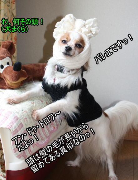 f:id:sabu36:20100319221253j:image