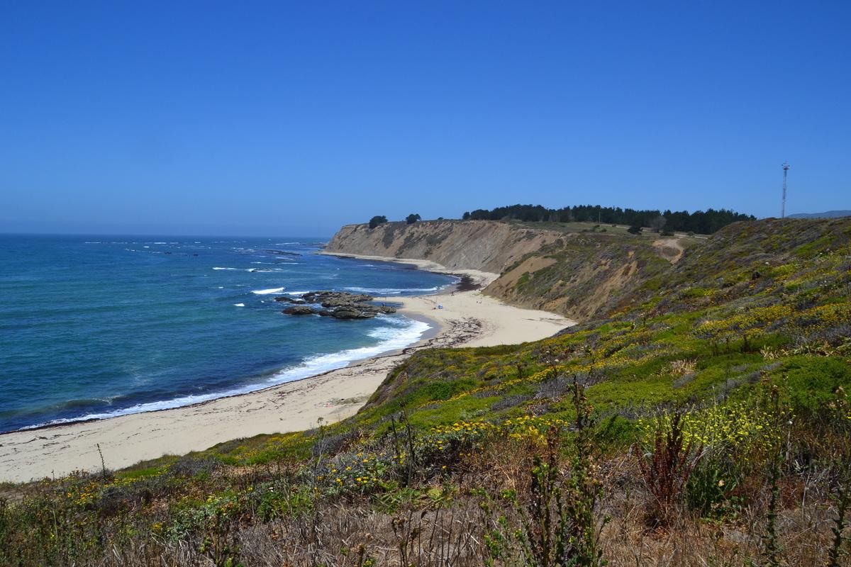 Ross' Coveの海岸