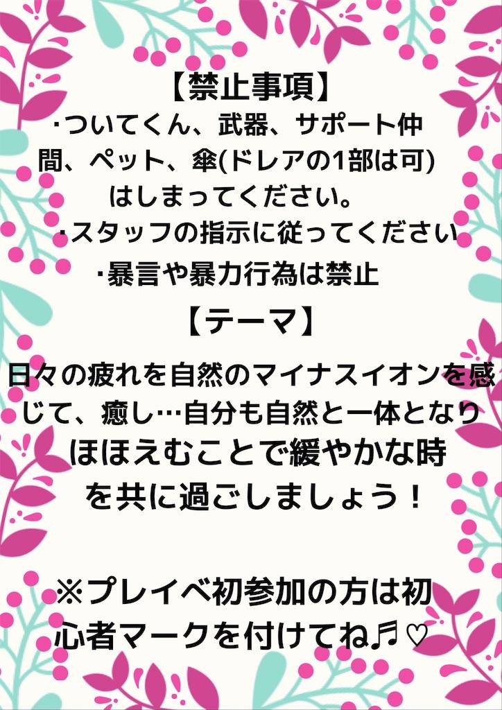 f:id:sachi_suiren:20190707213713j:image