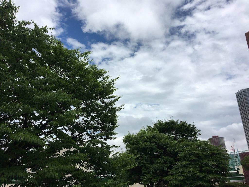 f:id:sachiyoga:20170609235851j:image