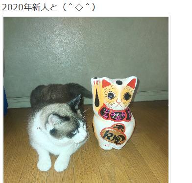 f:id:sadakiyo:20200101231705p:plain