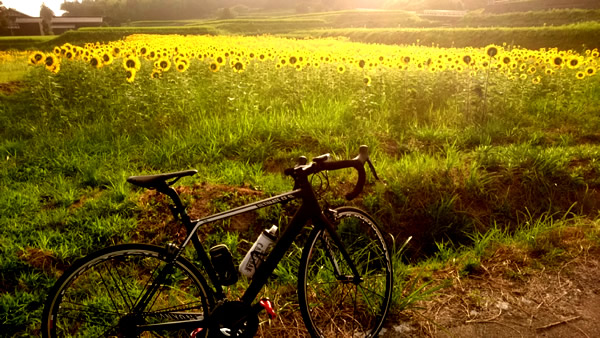 f:id:sado_roadbike:20160810101341j:plain
