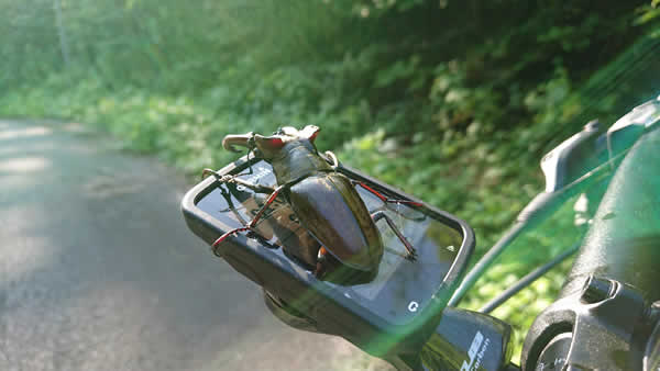 f:id:sado_roadbike:20190805112357j:plain
