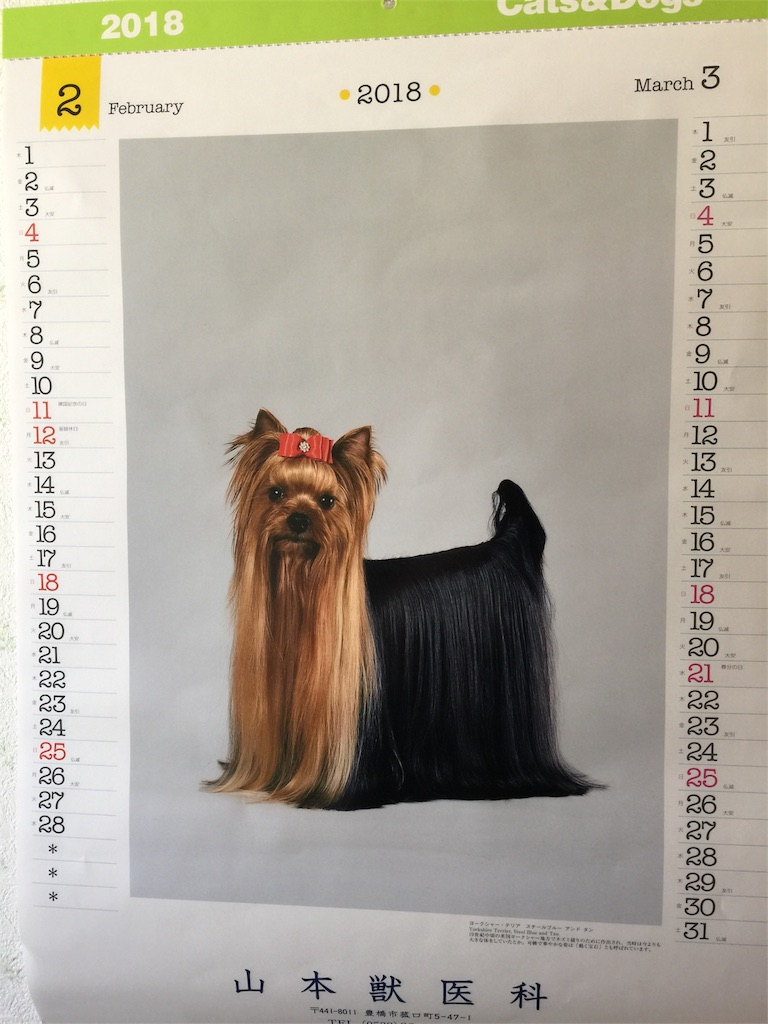 f:id:saeedhiroki26:20180306171827j:image