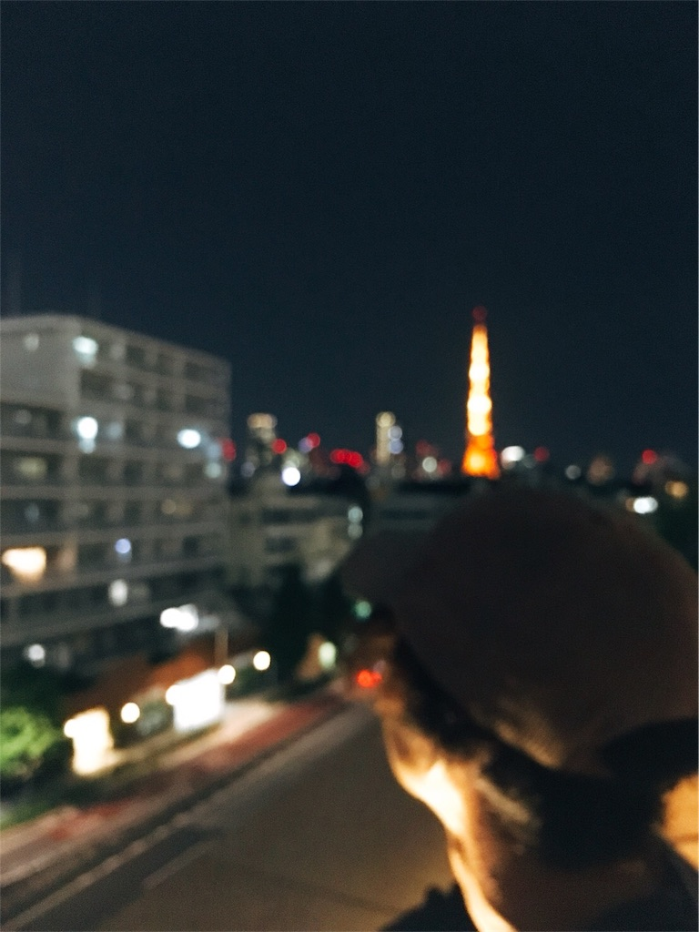 f:id:saeedhiroki26:20180515235324j:image