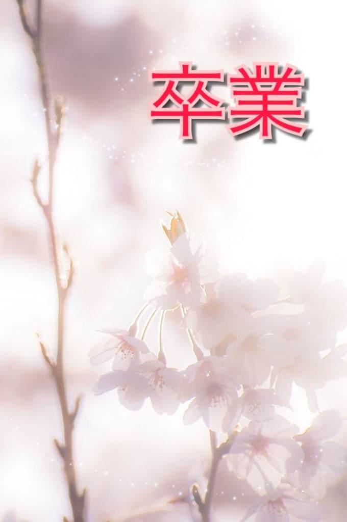 f:id:saekichi:20180312155309j:plain