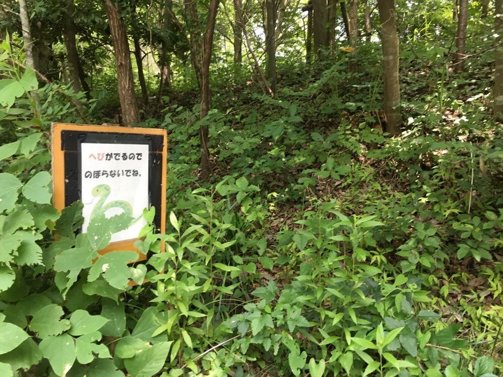 f:id:saekichi:20180718144508j:plain