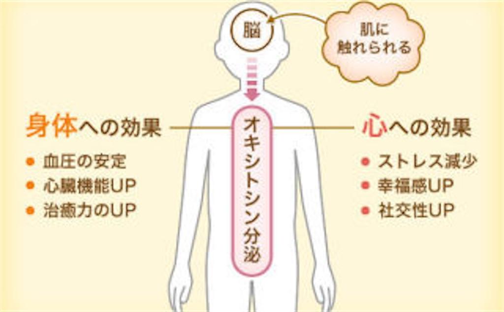 f:id:saekichi0829:20181110010802j:image