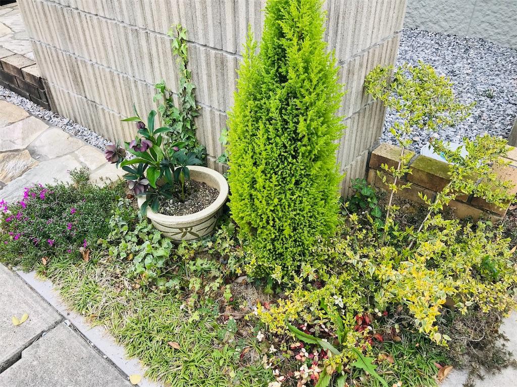 f:id:saekichi0829:20200412192720j:image