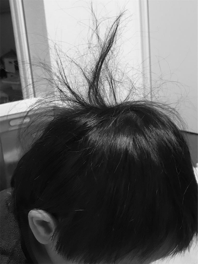 f:id:saekichi0829:20201214220608j:image