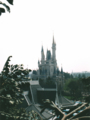 スイスファミリーツリーハウスからの眺め