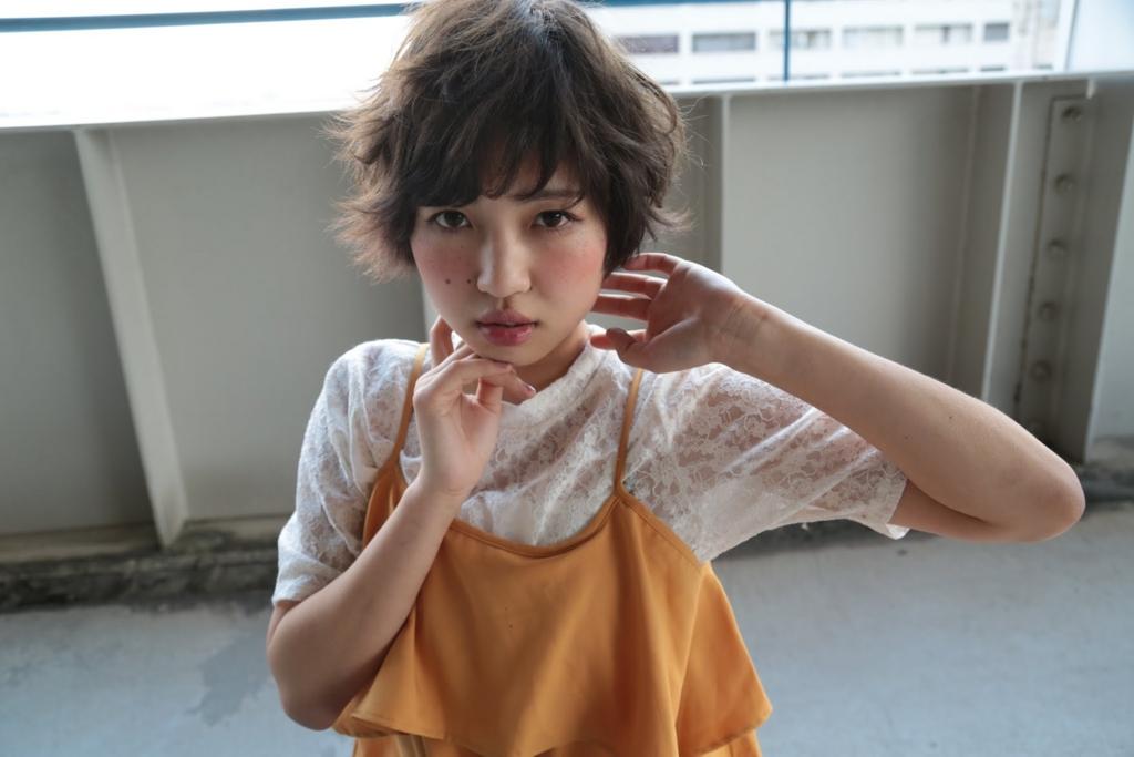 f:id:sagaramitsuhiro:20170203150903j:plain