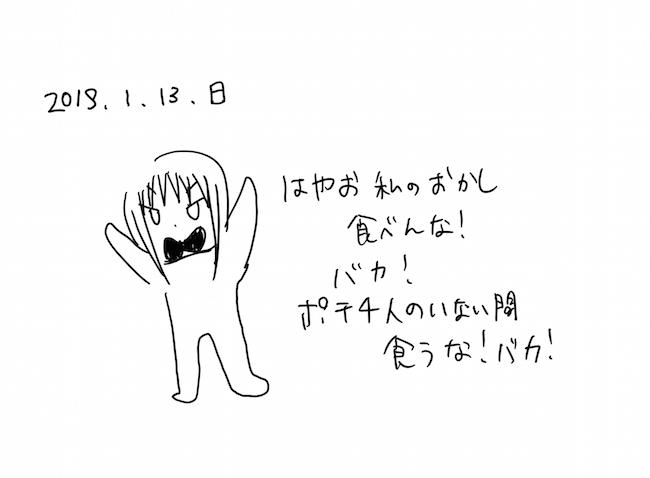 f:id:sagawatomomi:20190113214220j:plain