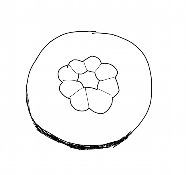 f:id:sagawatomomi:20190120182745j:plain