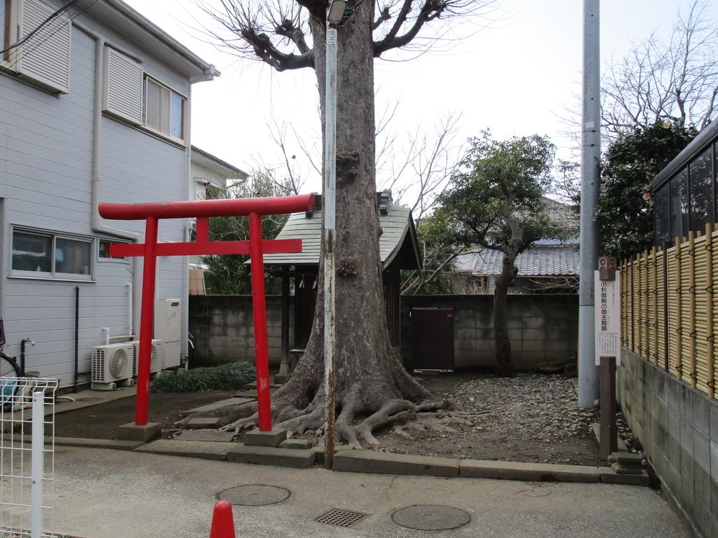 f:id:sagisaka6656:20190306014018j:plain