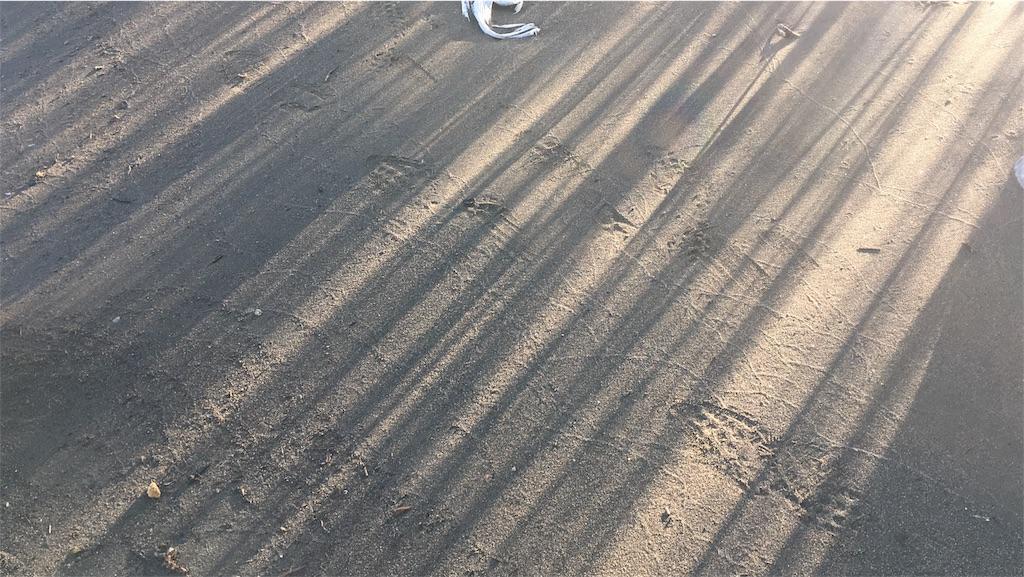 f:id:sahirororo:20170215015848j:image