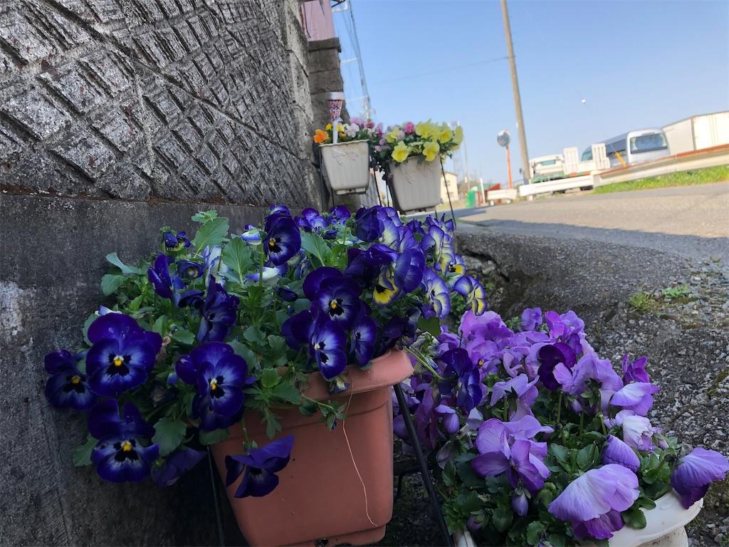 f:id:saho-tamura:20200403093013j:plain