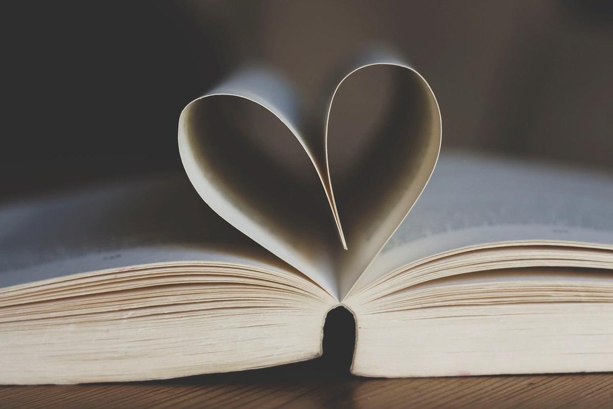 本のページを内側に曲げて横から見るとハートに見える