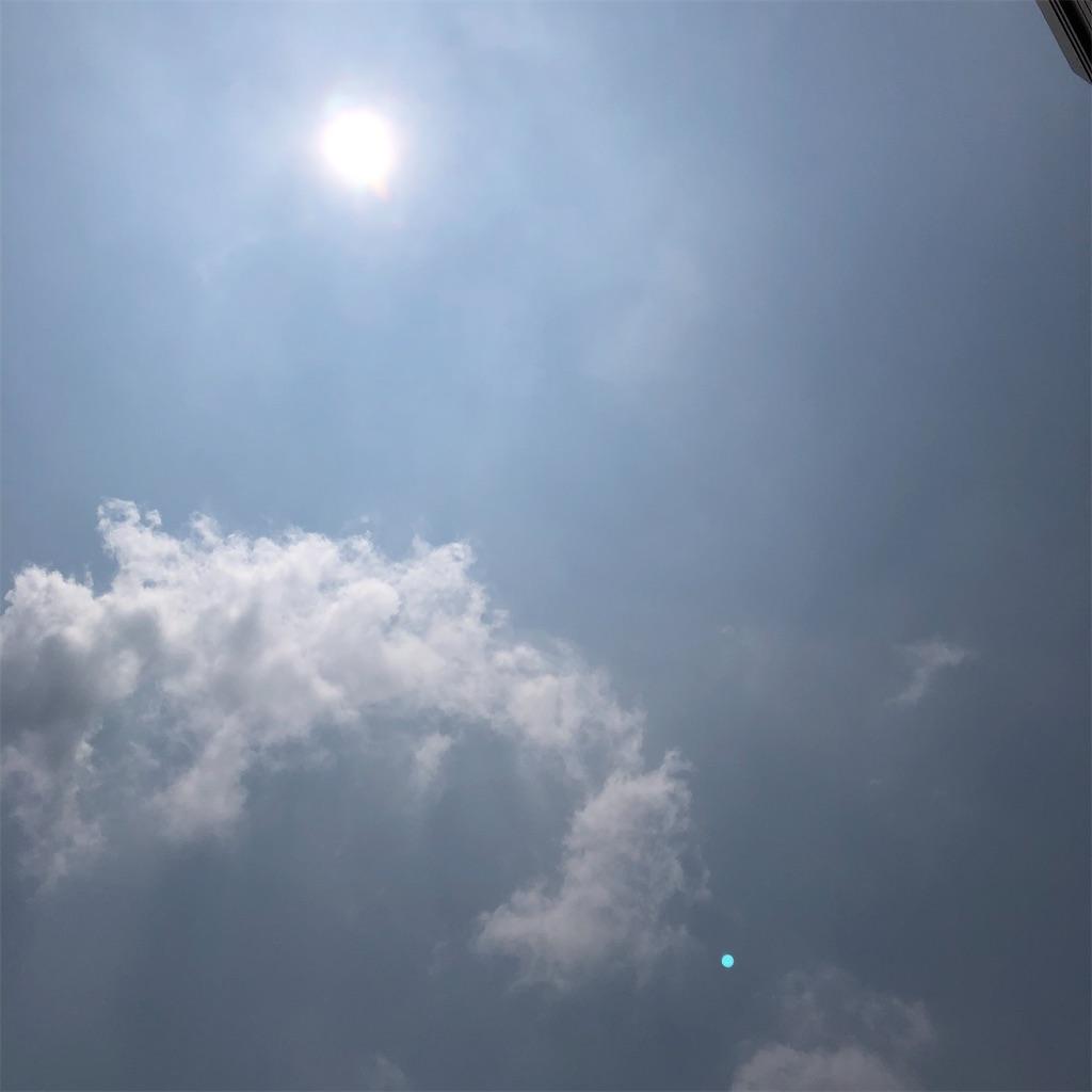 f:id:saho-tamura:20200807201128j:image