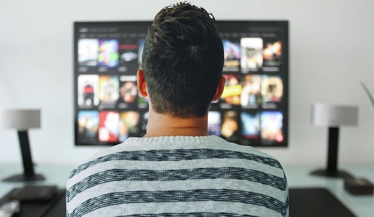 さまざまなコンテンツをテレビで見ている男性の後ろ姿