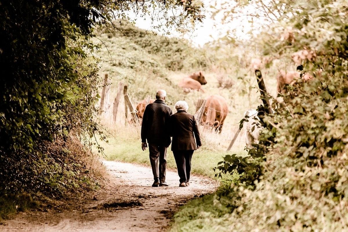 手をつないで歩くおじいさんとおばあさんの後ろ姿