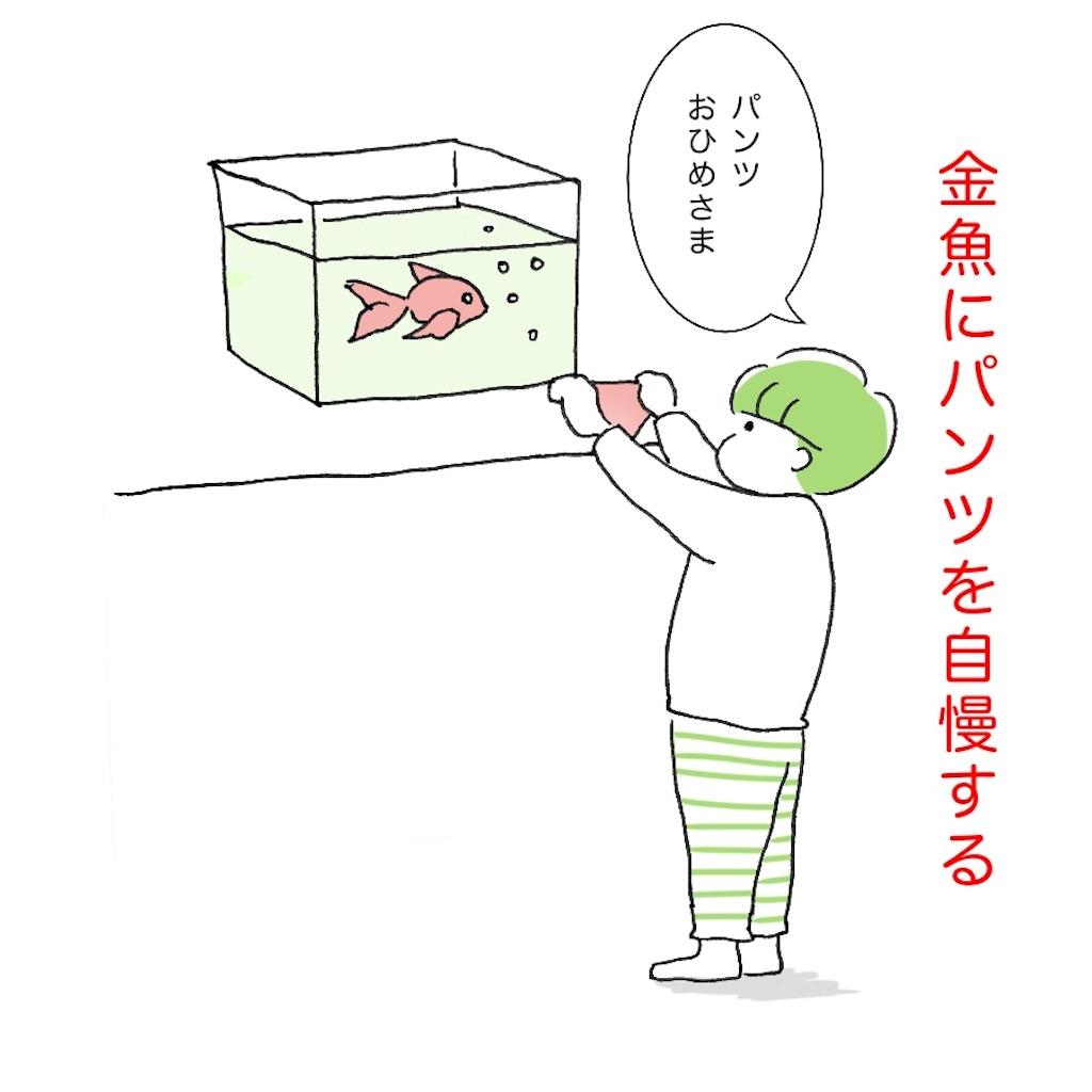 金魚にパンツを自慢する子供