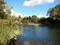 数十年振りの尻別川