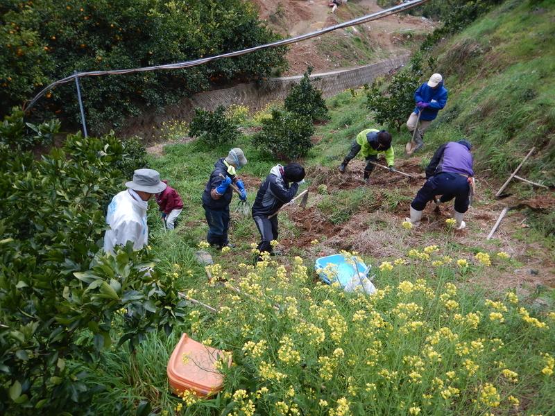 園地の土砂出し作業