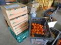 柑橘BOX