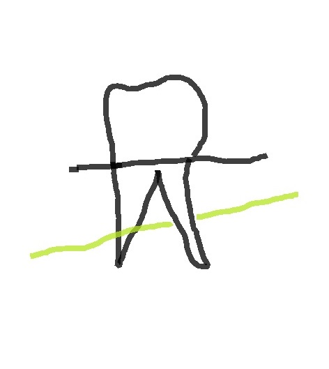 f:id:saijo-san:20210405212353j:plain