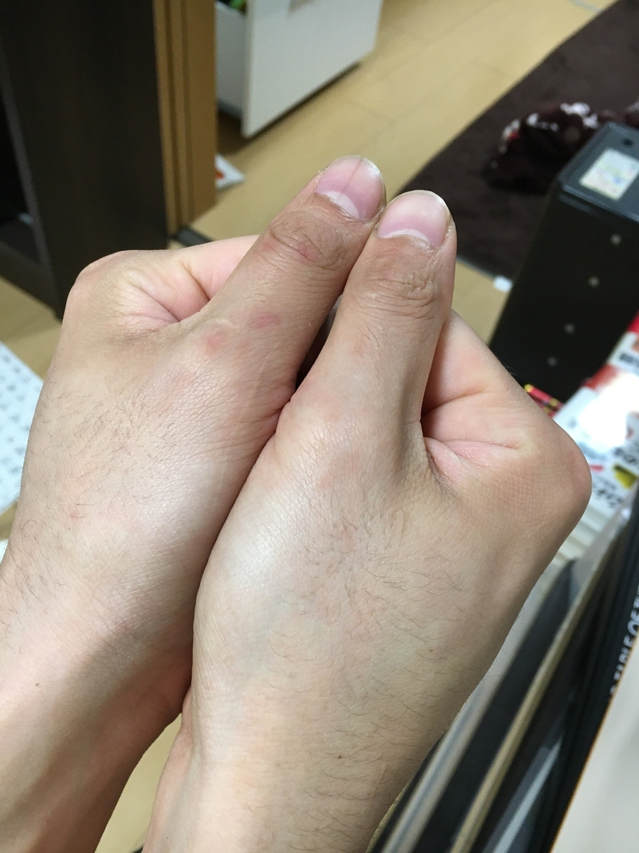 f:id:saijo-san:20210420210659j:plain