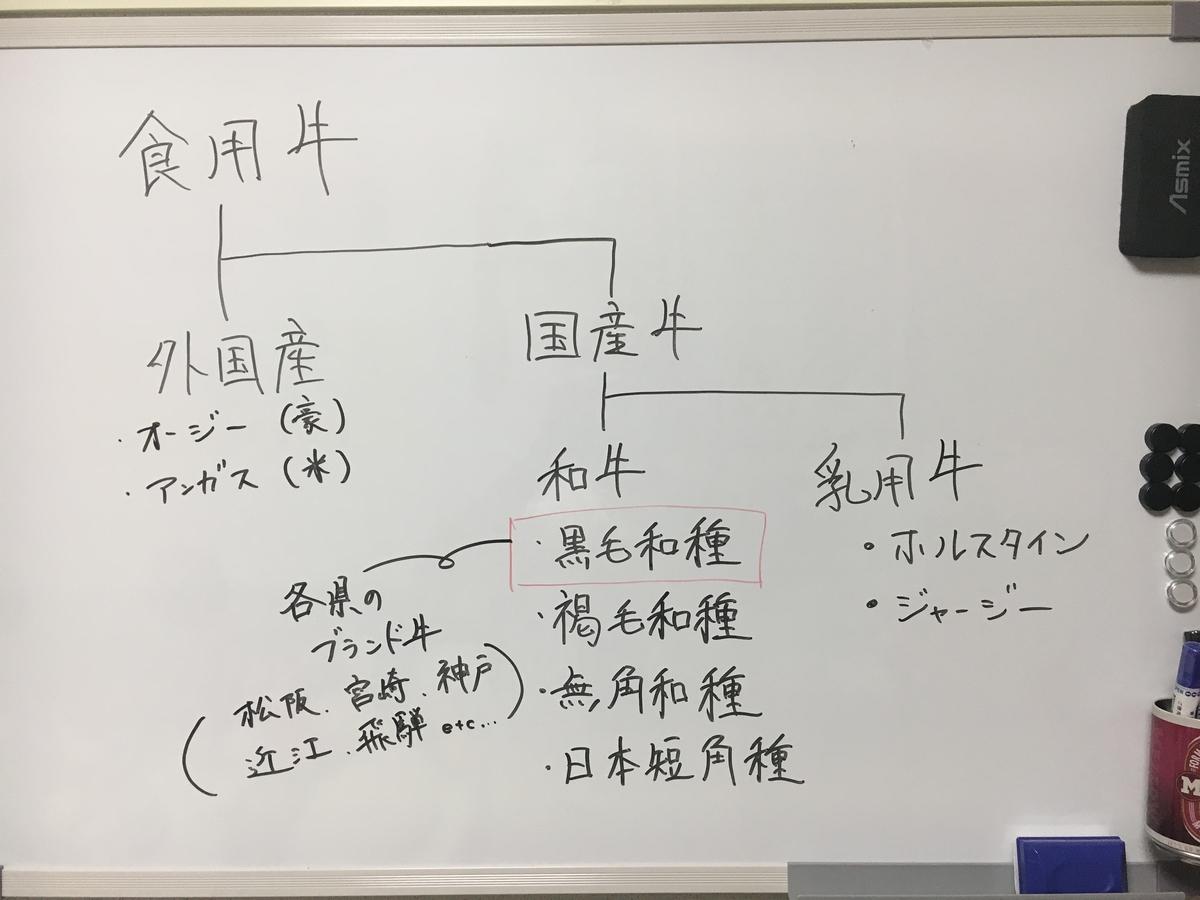 f:id:saijo-san:20210529195156j:plain