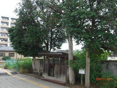 f:id:saikoh-diary:20110730174514j:image