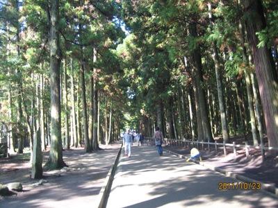 f:id:saikoh-diary:20111023111938j:image