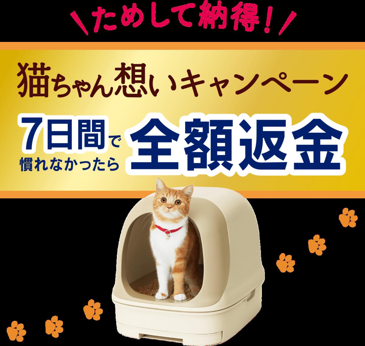 f:id:saikootoko:20200309183831p:plain