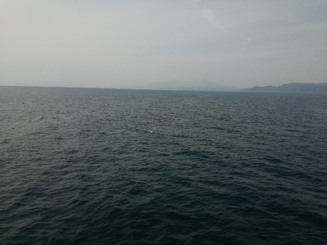f:id:sailingday0111:20190602183049j:image