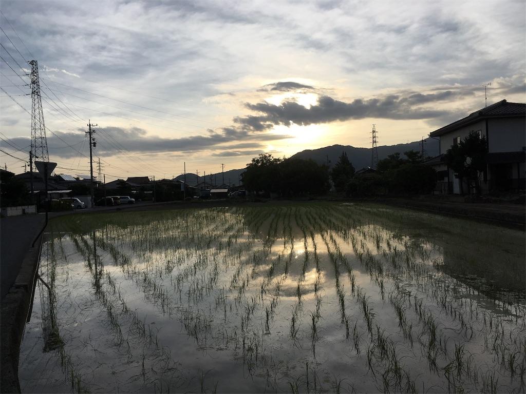 f:id:sainomori:20180703073840j:image