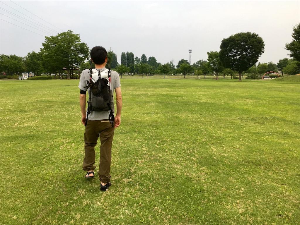 f:id:sainomori:20180720211707j:image