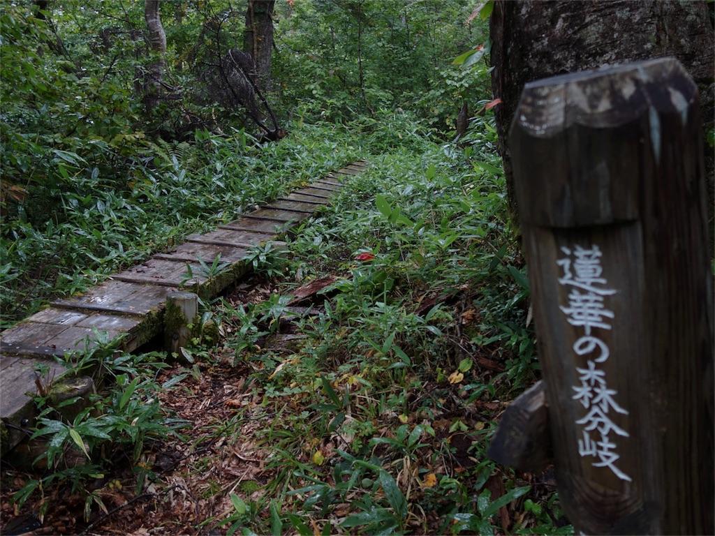 f:id:sainomori:20180926183734j:image