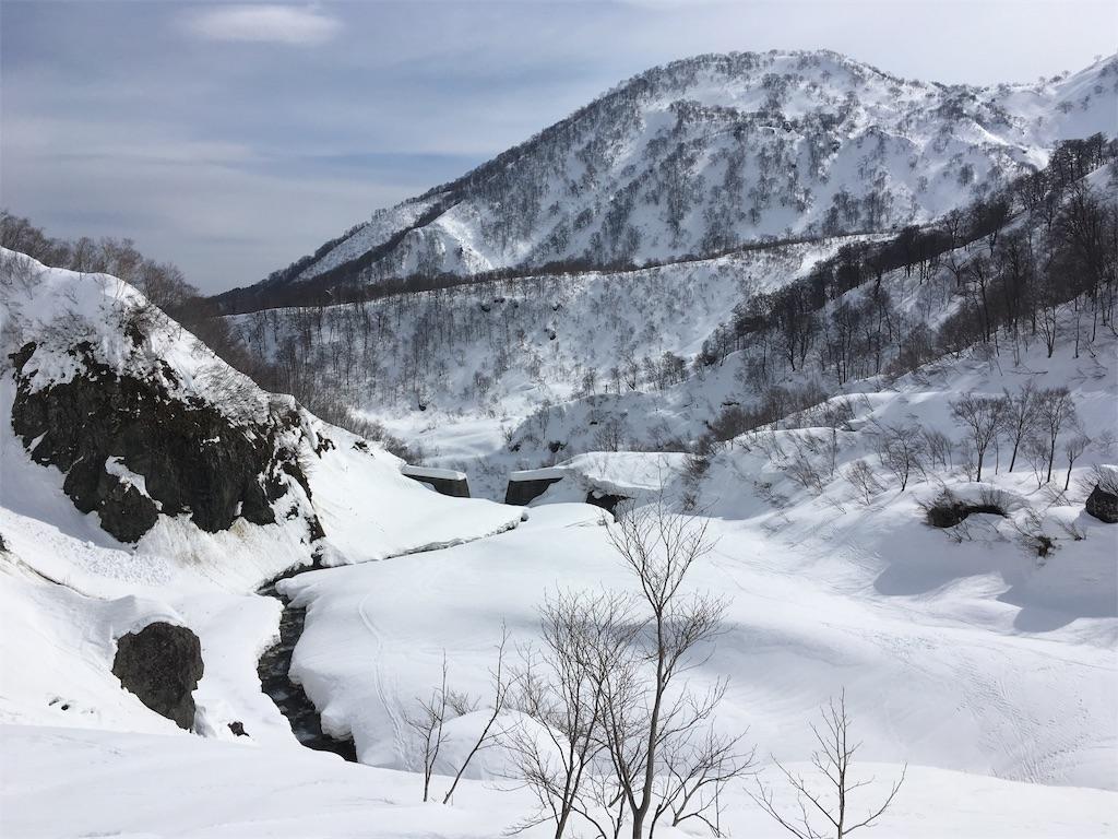 f:id:sainomori:20190227205552j:image
