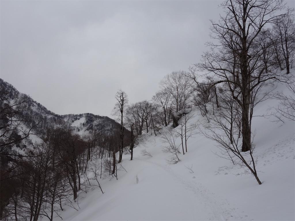 f:id:sainomori:20190327205703j:image