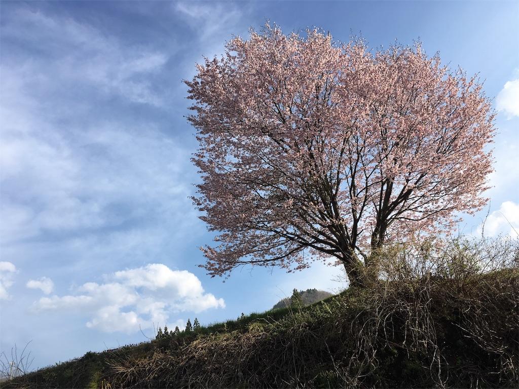 f:id:sainomori:20190504201921j:image