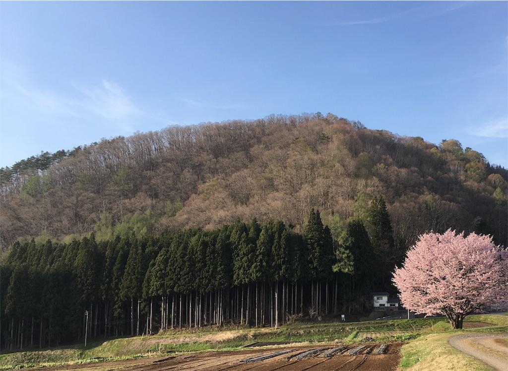 f:id:sainomori:20190504202256j:image